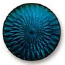 Turquoise 171