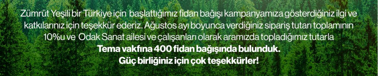 Türkiyemizi Ağaçlandırmaya Desteğimiz