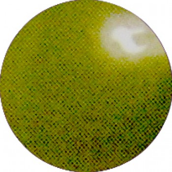 Zeytin Yeşili 0636