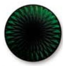 Medium Green 5517