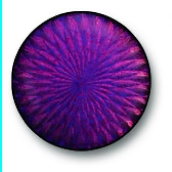 Violet 0026