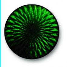 Dark Turquoise 0061A