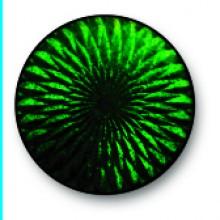 Dark Grass Green 0124