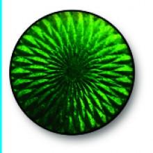 Grass Green 0126