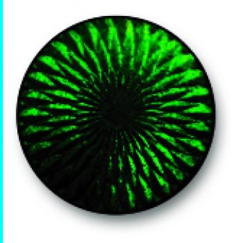 Dark Green 0128