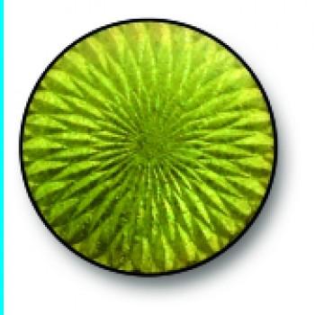 Light Green 0137
