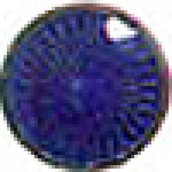 Dark Blue 5828