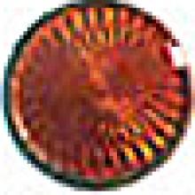 Dark Amber 6377